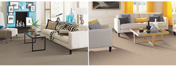 innovia touch xtreme clean carpet rooms
